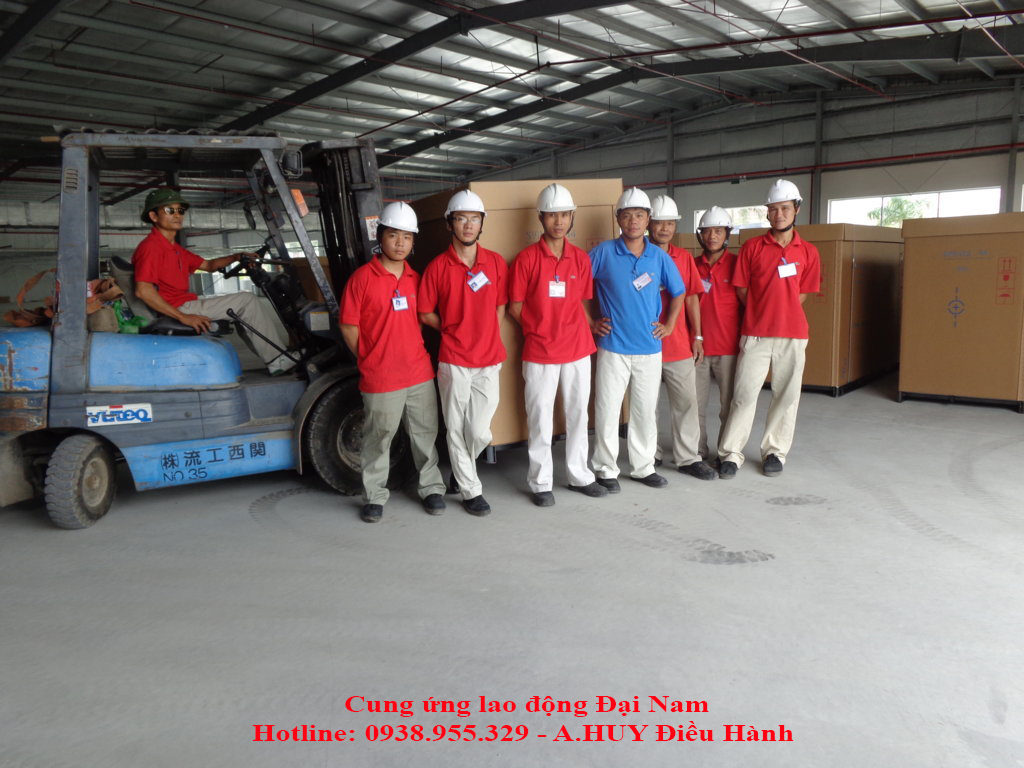 cung ung lao dong boc xep